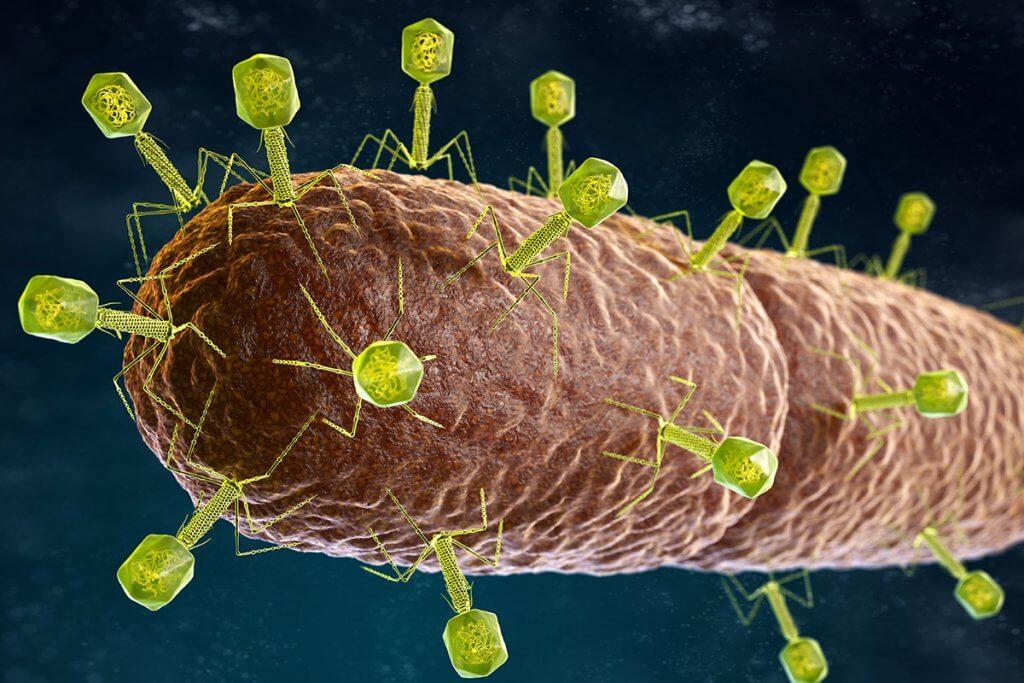 Welche Alternativen gibt es zu Antibiotika bei Rosacea?